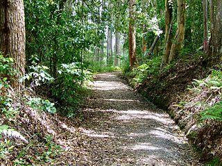 Palmwoods-Buderim Tramway