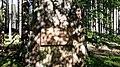 Památník knížete nad Dobronicemi (Q80455722) 02.jpg
