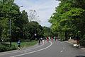Park Drive, Central Park (7174937276).jpg