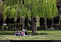 Parks in Tehran in Nowruz 2019 2.jpg