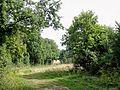 Parnes (60), GR 125 au nord-est du moulin de Chaudry vers Montjavoult 3.jpg