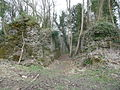 Part of Llangibby Castle ruins - geograph - 3392642.jpg