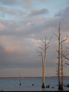 Pasquotank River river in the United States of America