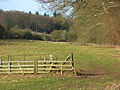 Pasture, Bradfield - geograph.org.uk - 677751.jpg