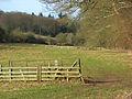 Pasture, Bradfield - geograph.org.uk - 677751.jpg