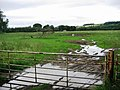 Pasture Land - geograph.org.uk - 501956.jpg