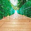 Path to nature.jpg