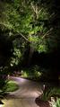 Pathway Lighting.png