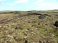 Peat Bank - geograph.org.uk - 443466.jpg