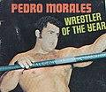 Pedro Morales - Wrestling Annual n.4 - 1973 cover.jpg
