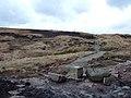 Pennine Way, Castleshaw Moor - geograph.org.uk - 146198.jpg