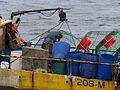 Pesca de centolla en la Bahía Ushuaia 15.JPG