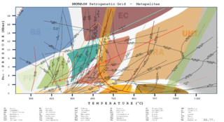 Petrogenetic grid