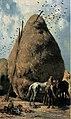 Pettenkofen-Horses in front of a haystack.jpg