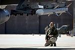 Phase II Operational Readiness Exercise (8473421141).jpg