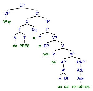 "Linguistic performance -  Phrase tree structure of error ""Why do you be an oaf sometimes"""