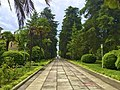 Pictures from the Sukhumi, Abkhazia military sanatorium (29191341046).jpg