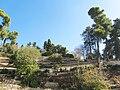 PikiWiki Israel 11225 Castle garden.JPG