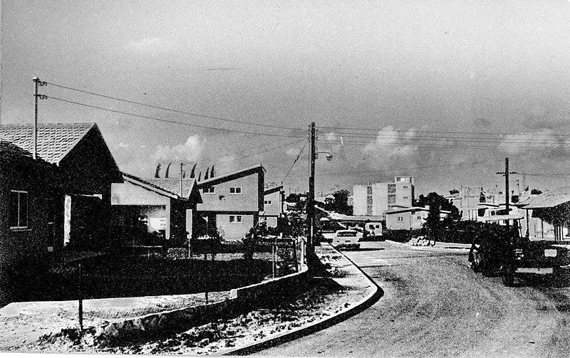 שכונת גרין