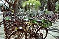 PikiWiki Israel 8141 Gan-Samuel - bicycle parking 2001.jpg