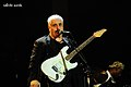 Pino Daniele Earth Day 2010 b.jpg