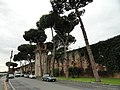 Pisa fortress (13830740214).jpg