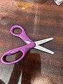 Plane Scissors.jpg