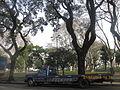 Plaza José C. Paz 00.JPG
