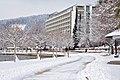 Poertschach Johannes-Brahms-Promenade mit Parkhotel 144012013 694.jpg