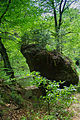 Polenztal - Elbsandsteingebirge - WLE 2015 - 17.jpg