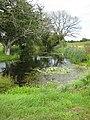 Pond at Harts Farm - geograph.org.uk - 936602.jpg