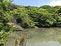 Pond in Mifuneyama Garden 4.jpg