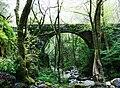 Ponte sobre o río Sesín. Mosteiro de San Xoán de Caaveiro, A Capela.jpg