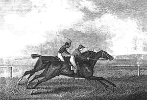 Pope (horse) - Pope (foreground) and Wizard running in the 1809 Derby in a contemporary engraving based on a painting by John Nott Sartorius.