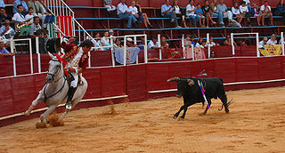 Portuguese-style bullfighting