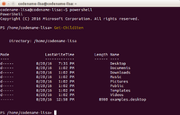 PowerShell for Linux 6.0 Alpha 9 on Ubuntu.png