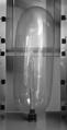 Präservativ Volumentest.png