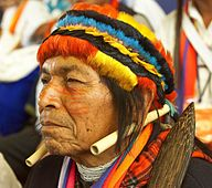 Shamans usually use icaros to heal with the power of music.