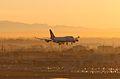 Qantas in the Morning (2190972454).jpg