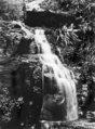 Queensland State Archives 1204 Falls below the Canyon Springbrook South Queensland c 1931.png