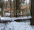 Quellen im Wald - panoramio.jpg