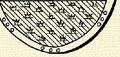 Rét (heraldika).PNG
