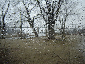 English: Rainy day in Henry, Illinois, USA Cat...