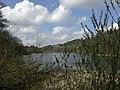 Raith Lake 03.jpg