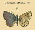 RamonDognin1887.JPG
