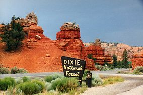 A photo of Scenic Byway 12 and a Dixie National Forest sign in Red Canyon