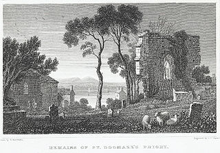 Remains of St. Dogmael's Priory: Pembrokeshire
