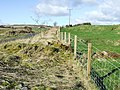 Remains of lineside hut - geograph.org.uk - 696908.jpg