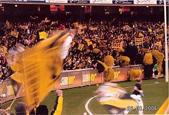 Australian rules football culture - Spectators at an Australian rules football match