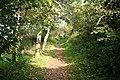 Ringmore, Smugglers Lane - geograph.org.uk - 582455.jpg